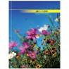 Buromax, 96 аркушів, А4, Ділова книга, Клітинка
