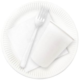 Lux, No. 190, disposable tableware set, For 6 persons, m / s
