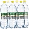 Регина, упаковка 6 шт. по 1,5 л, сильногазированная вода, ПЭТ