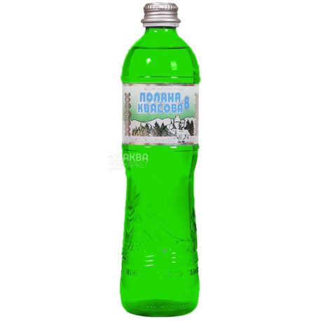 Поляна Квасова, 0,5 л, Упаковка 9 шт., Вода минеральная сильногазированная, стекло