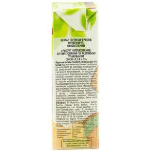 Rich Kids, 200 ml, nectar Multifruit