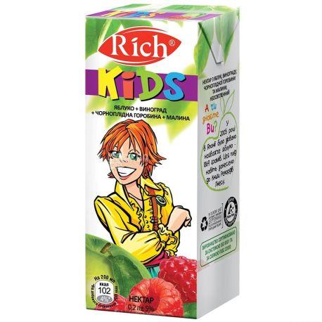 Rich Kids, Яблуко-виноград-чорноплідна горобина-малина, 0,2 л, Річ Кідс, Нектар натуральний, дітям з 12-ти місяців