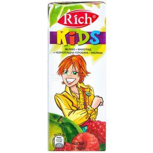Rich Kids, Яблоко-виноград-черноплодная рябина-малина, 0,2 л, Рич Кидс, Нектар натуральный, детям с 12-ти месяцев
