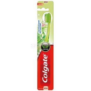 Colgate, 1 шт., Зубная щетка, С натуральными экстрактами, Сосна