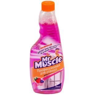 Mr. Muscle, 500 мл, запасной флакон, Для мытья стекол, Лесные ягоды, ПЭТ
