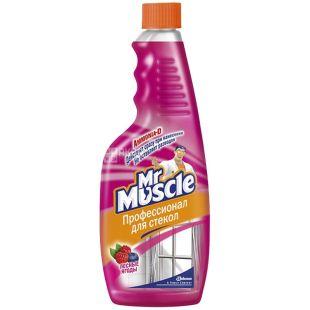 Mr. Muscle, Запасний флакон, Для миття скла, Лісові ягоди, 500 мл, Упаковка 12 шт.