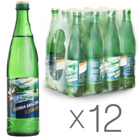 Поляна Квасова, 0,5 л, Упаковка 12 шт., Вода минеральная сильногазированная, стекло