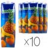 Sandora, Мультивитамин, Упаковка 10 шт. по 0,95 л, Сандора, Нектар натуральный