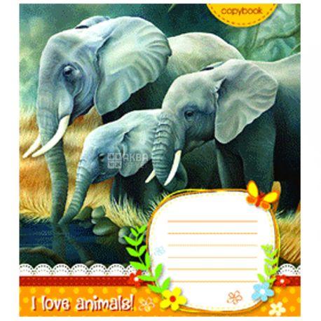 Mizar+, 1 шт., 18 листов, А5,Тетрадь, Серия Животные Африки, Ассорти, Клетка