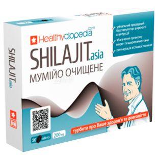 Healthyclopedia, 30 капсул по 200 мг, Мумие очищенное