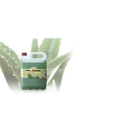 Мыло Зеленая аптека 5 л Алоэ
