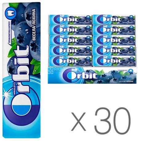 Orbit Жувальна гумка весела лохина, Упаковка 30 шт. по 14 г, картон