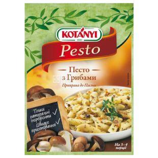 Kotanyi Песто з грибами, Приправа для пасти, 30 г, Паперовий пакет