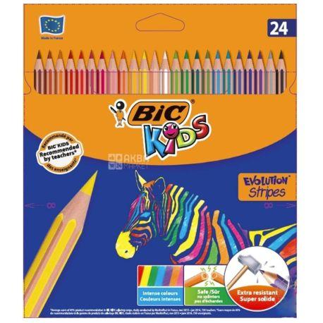 BIC Evolution, Карандаши цветные, 24 шт., картон