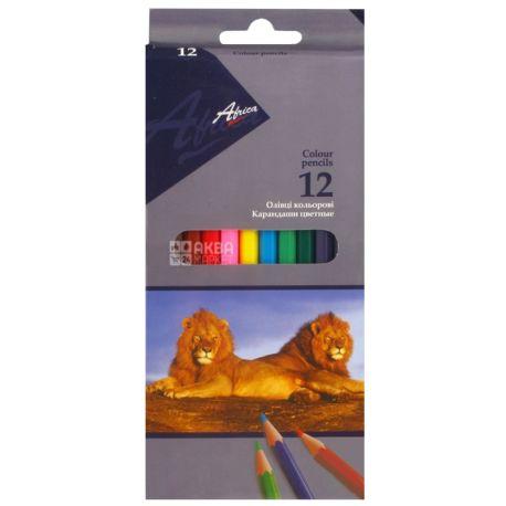 Economix Africa, Карандаши цветные, упаковка 12 шт., картон
