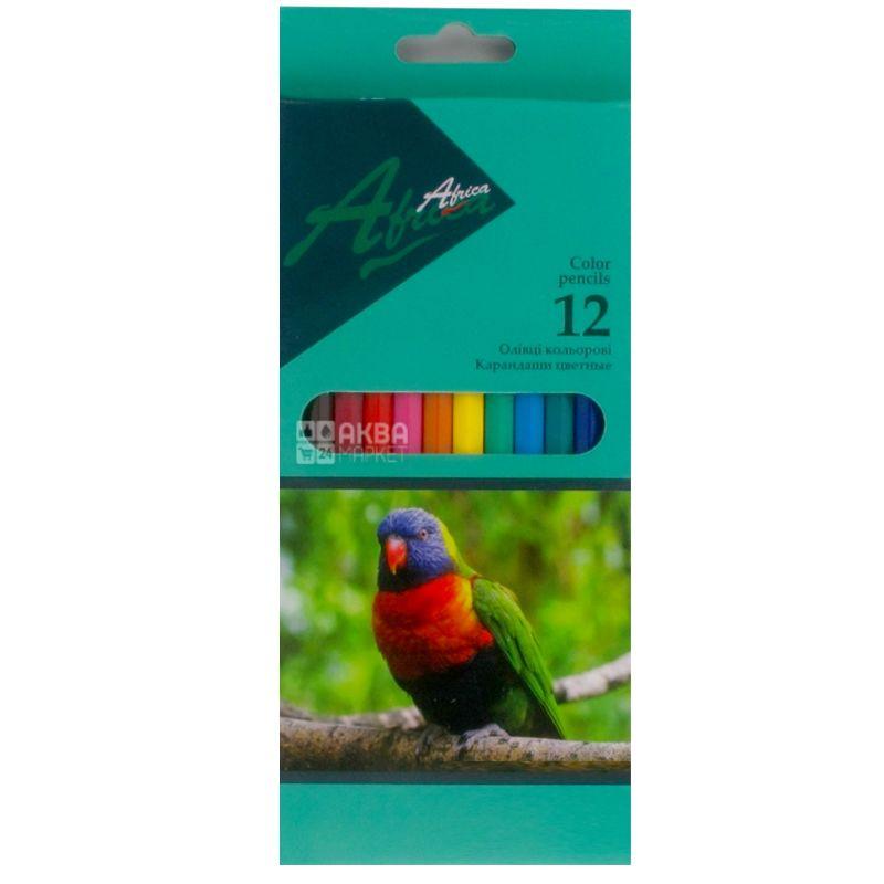 Economix Africa, Карандаши цветные, Пластиковые, упаковка 12 шт., картон