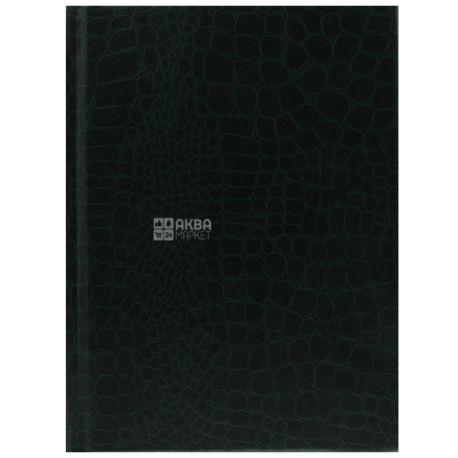 Economix С пластиковой обложкой, Блокнот, А5, 80 листов
