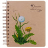 Economix Цветы, Блокнот, А5, 100 листов
