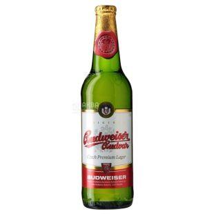 Budweiser Budvar, пиво светлое, 0,5 л