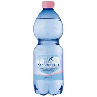 San Benedetto, 0,5 л, Сан Бенедетто, Минеральная вода негазированная, ПЭТ