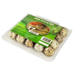 Quail eggs, 20 pcs, blister