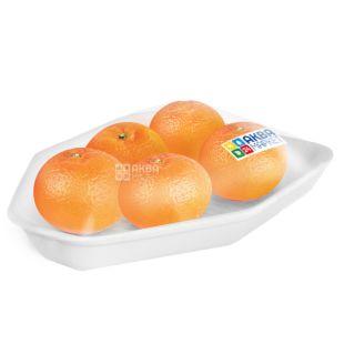 Mandarin Spain, 600 g