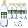 Регина, Вода сильногазированная минеральная, 0,5 л, Упаковка 8 шт.