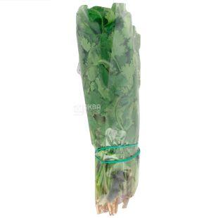 Fresh coriander, 50 g