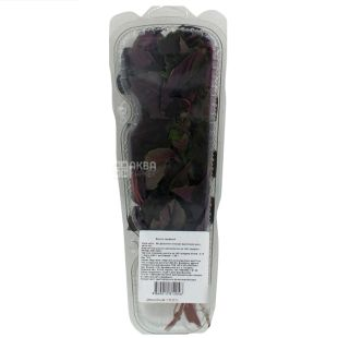 Red basil, 50 g