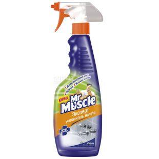 Mr Muscle, Гель для видалення нальоту, 500 мл