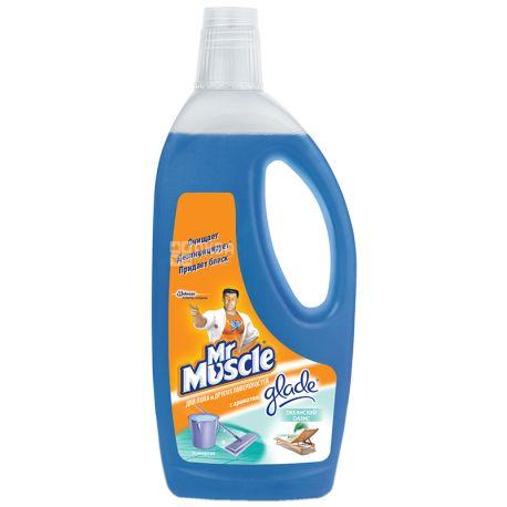 Mr. Muscle Океанский бриз, Средство для мытья полов,  750 мл