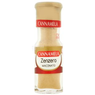 Cannamela, ground ginger, 20 g