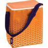 Holiday cooler bag, orange, 14 l, TM Ezetil