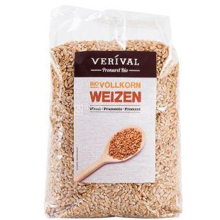 Organic barley, 500 g, TM Verival