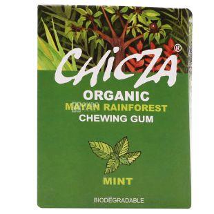 Organic Chewing Gum Mint, 30 g, TM Chicza