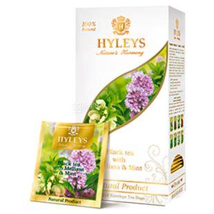 Hyleys Nature's Harmony, 25 пак, Чай черный Хэйлис Гармония Природы, Мелисса и мята