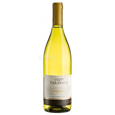 Tarapaca Chardonnay Leon de Tarapaca, Вино белое сухое, 0,75 л