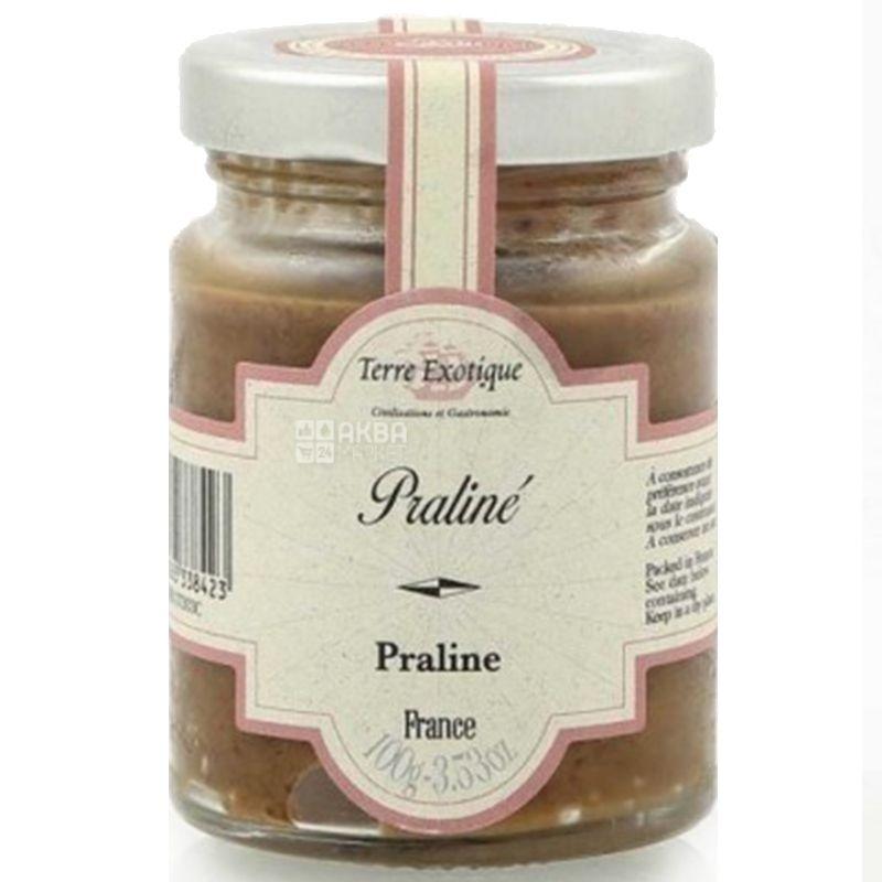 Terre Exotique, Паста ореховая Пралине (Франция), 100 г
