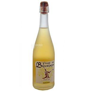 Vallee de la Seiche Cidre Blanc, Сидр яблочный, 0,75 л