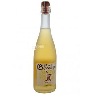 Vallee De La Seiche, Pear Cider, Poire Artisanal, 0.75 ml