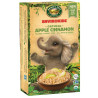 Nature's Path, Gluten Free Organic Oatmeal with Cinnamon and Apple, Envirokidz, 264 g