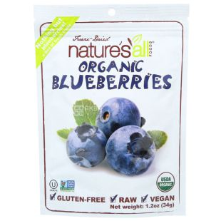 Natierra, Nature's All 34g Organic Blueberry Organic Sublimated