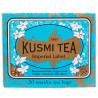 Kusmi Tea, Imperial Label, 20 пак. х 2,2 г, Чай Кусми Ти, Знак Империи, зеленый с корицей и апельсином