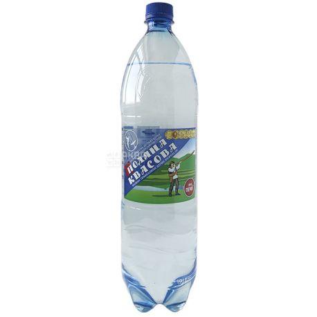 Поляна Квасова, 1,5 л, Вода минеральная сильногазированная вода, ПЭТ