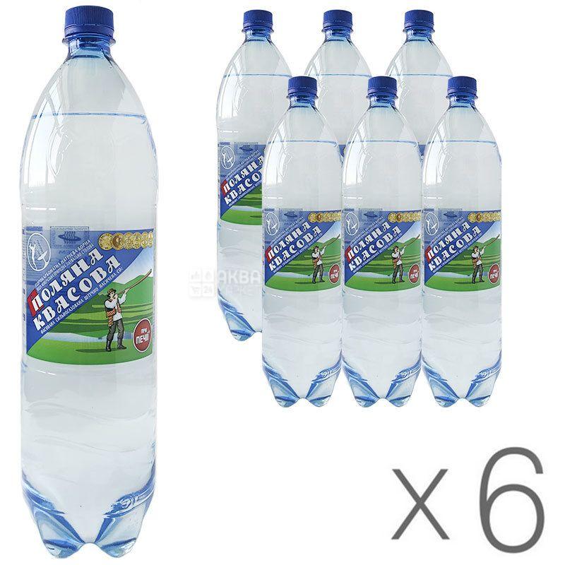 Поляна Квасова, 1,5 л, Упаковка 6 шт., Вода мінеральна сильногазована, ПЕТ