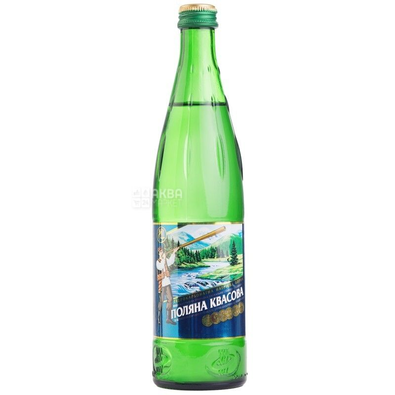 Polyana Kvasova, 0.5 l, sparkling water, glass, glass
