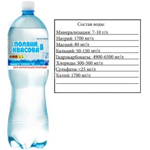 Polyana Kvasova-8, 1.5 l, carbonated water, PET, PAT