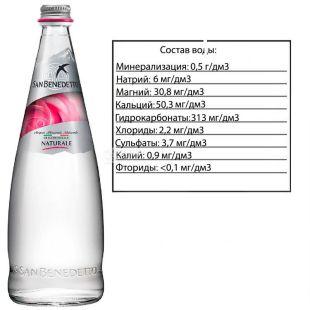 San Benedetto, Still Water, 0.75 L, glass, glass