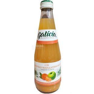 Galicia, 0,3 л, Галіція, Сік, Яблучно-мандариновий