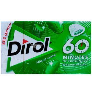 Dirol, 60 минут свежести, 18 г, Дирол, Жевательная резинка, Нежная мята